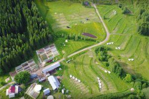 ridgedale permaculture farm