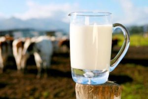 Raw milk miracle