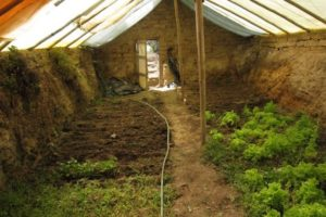 underground greenhouse walpini