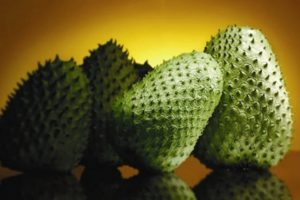 Soursop Alternative Cancer Treatment