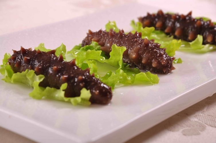 sea cucumber delicacy in japan