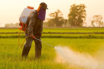 Farmer spraying roundup herbicide on genetically modified food crops