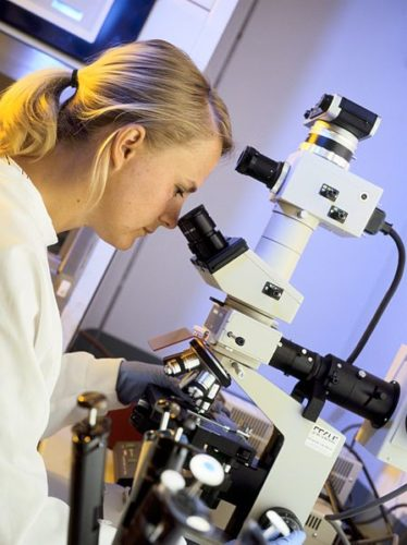 woman peering through a microscope at genetic material