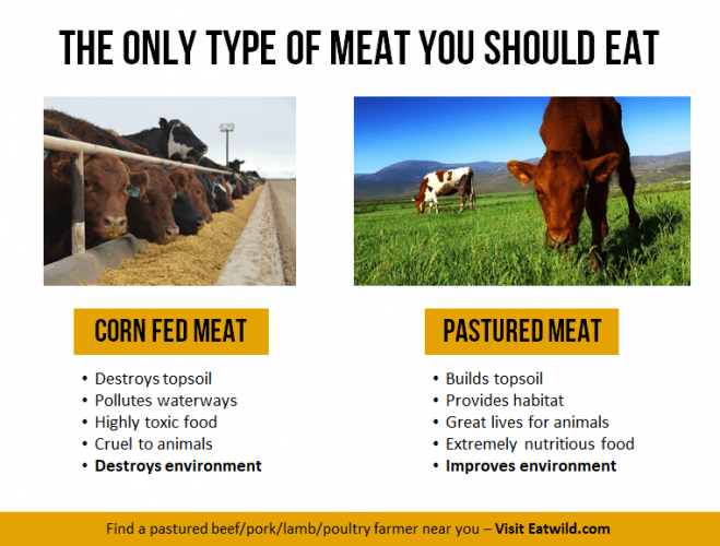 Corn fed vs grass fed pastured meat raw meat