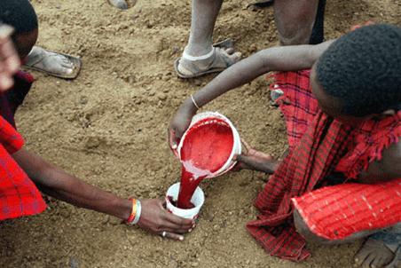 Maasai hunter gatherers preparing the milk and blood drink