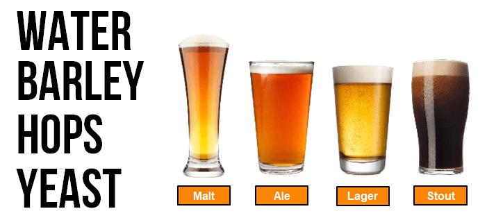 water, barley, hops and yeast modern beer ingredients