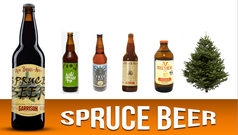 spruce beer, hops and beer