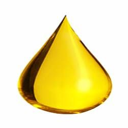 omega-6 droplet released as free fatty acids into the blood during stress and fasting