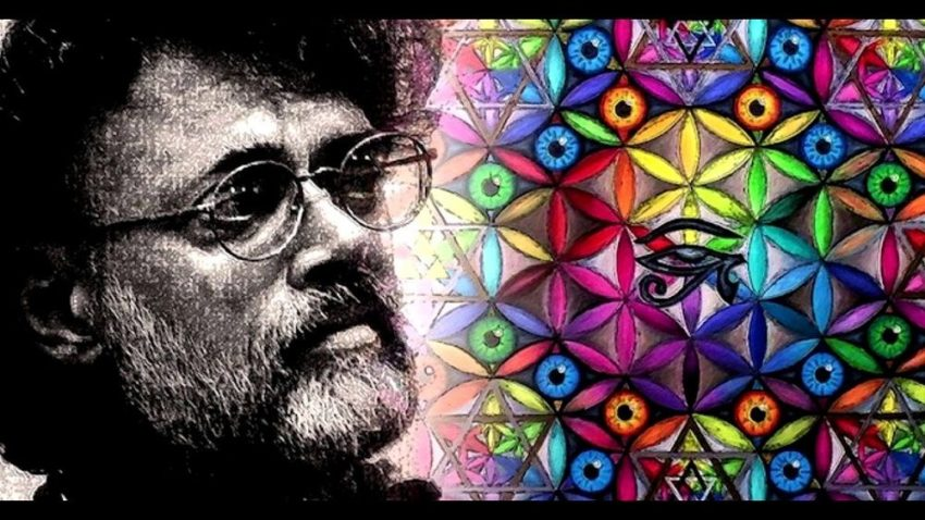 Terence Mckenna quotes